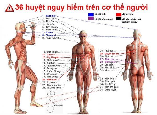 Các huyệt đạo trên cơ thể người nguy hiểm đến tính mạng con người