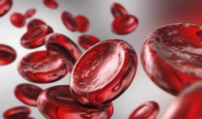 hemoglobin là gì